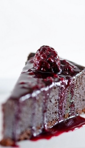 Chocolate-orbit-cake-with-blackberry-cassis-sauce-289x500