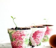 Thumb_decoupaged-terra-cotta-pots-place-of-my-taste