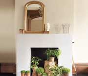 Thumb_fireplace-plants_300