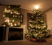 Thumb_20111129_christmastree_22