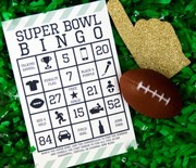 Thumb_super-bowl-bingo-2-500x333
