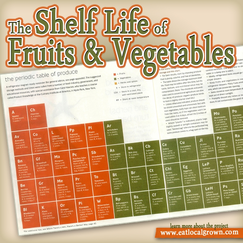 _shelf-life-of-fruits-and-vegetables-1372538285