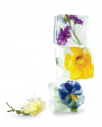 Floral_ice_cubes