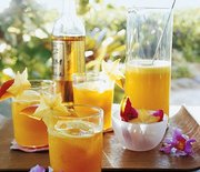 Thumb_mla102673_0107_cocktails_xl