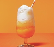 Thumb_orange-float_300