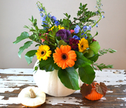 Thumb_pumpkinflowers2