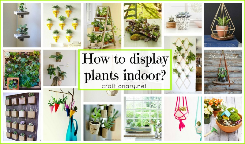 How To Display Plants Indoor 42 Diy Projects