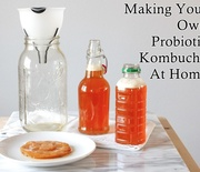 Thumb_making-your-own-probiotic-kombucha-at-home