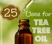 Thumb_tea-tree-oil-uses