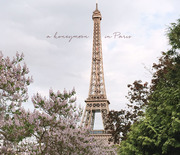 Thumb_paris_honeymoon_title