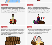 Thumb_bi-graphics_vocab-to-make-you-sound-smarter-about-wine__1_