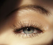 Thumb_landscape-1475250690-1475178447-hbz-younger-eyes-8