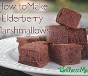 Thumb_how-to-make-elderberry-marshmallows