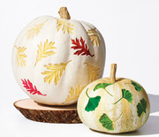 Thumb_watercolor-pumpkins-596-d112253_sq