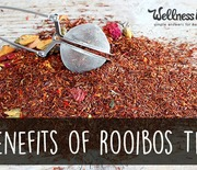 Thumb_benefits-of-rooibos-tea