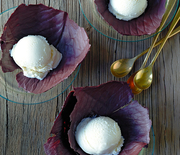Thumb_vegetable-thanksgiving-ice-cream-mld106974_vert