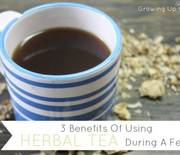 Thumb_herbal-tea-for-fevers