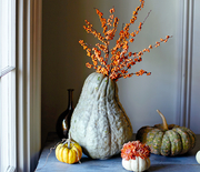 Thumb_good-things-squash-vase-mld106852_vert